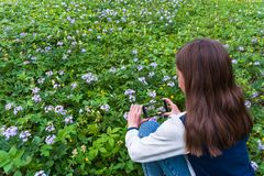 Teenage girl making a photo royalty free stock images