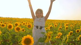 Teenage girl playing in a field of golden sunflowers, happy girl playing in the sun in a field of yellow flowers. stock footage