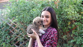 Teenage girl playing with puppy stock video footage