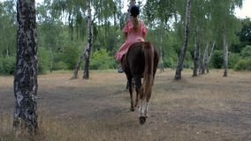 A teenage girl in a protective helmet and pink dress rides a brown horse in a birch grove. Back view. 4k. 4k video.  stock video footage