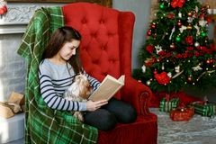 A teenage girl is reading a book. The concept of a Merry Christmas, holiday, family royalty free stock photography