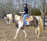 Teenage Girl Riding Horse. Beautiful teen girl on a horse in a pasture getting ready to ride trails Royalty Free Stock Photography