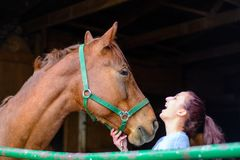 A teen girl laughs with her horse. A teenage girl shares a laugh with her brown horse Royalty Free Stock Images