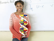 Teenage girl (15-17) standing beside whiteboard in classroom, holding DNA model, smiling, portrait Royalty Free Stock Images
