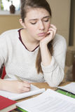 Teenage Girl Struggling With Homework Royalty Free Stock Photography