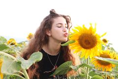 A teenage girl and a sunflower. Blossom in a sunflower field royalty free stock image