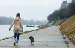 Teenage girl walking the dog Stock Photography