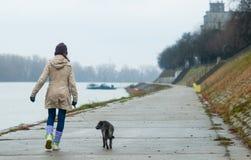 Teenage girl walking the dog Stock Photography