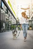 Teenage girl walking with her dog through the city. Royalty Free Stock Photos