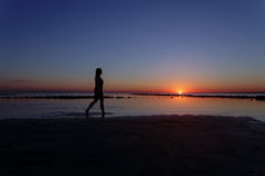 Teenage girl walking in water on beach in sunset. Silhouette photo Stock Images