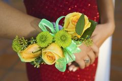 Teenage girl wearing corsage close-up of flowers Royalty Free Stock Photo