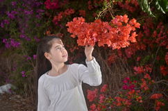 Teenage girl in white with colorful bougainvillea flowers Stock Photos