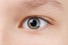 Teenage girls green eye Stock Images