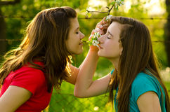 Teenage girls smelling flowers in orchard Royalty Free Stock Photo