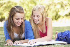 Teenage Girls Studying In Park Stock Photo