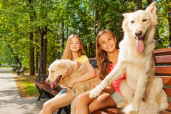 Teenage girls with their dogs on the park bench. Happy teenage girls sitting on the bench in the park alley on sunny summer day with dogs Stock Images