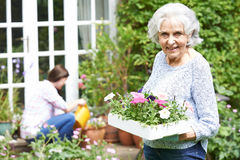 Teenage Granddaughter Helping Grandmother In Garden Stock Photography