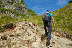 Teenage hiker on mountain trail Royalty Free Stock Photo