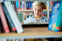 Teenage reader Stock Photography