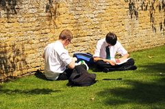 Teenage schoolboys sittin on grass working. Stock Photos