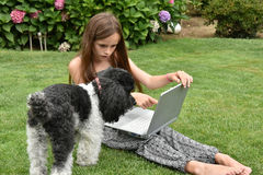 Teenage schoolgirl with dog  notebook. Teenage girl  with laptop.Teenager with wonderful liong brown hair sitting on the grass and shoes her dog how to work with Stock Photography