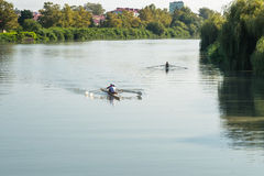 Teenage sportsmen in a boat, rowing on the river Rioni, Poti, Ge Royalty Free Stock Image