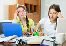 Teenage student girls study at home Stock Images