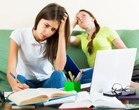 Teenage student girls study at home Stock Photography