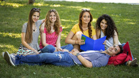 Teenage students. A group of smiling teenage students Stock Images