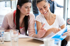 Teenage students studying together Royalty Free Stock Images