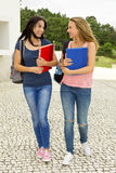 Teenage students Royalty Free Stock Image