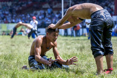 Teenage wrestlers battle for supremacy during competition at the Kirkpinar Turkish Oil Wrestling Festival in Edirne, Turkey. Stock Photography