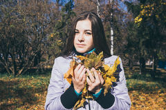 Teenager and the armful of yellow autumn leaves Stock Photography