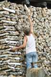 Teenager arranges firewood into stack background Stock Image