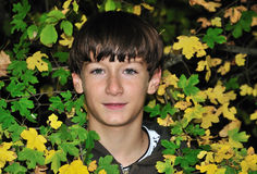 Teenager beetwin leaves Stock Photography