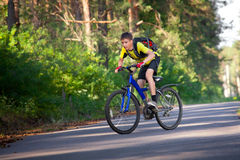 Teenager on a bicycle traveling in the forest Royalty Free Stock Photography