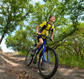 Teenager on a bicycle traveling in the woods Royalty Free Stock Photo