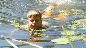 Teenager boy is bathing in a wild river in the summer. Duckweed on the river in natural natural conditions. A teenager boy is bathing in a wild river in the stock video footage