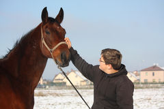 Teenager boy and bay horse portrait in winter Royalty Free Stock Images