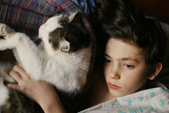 Teenager boy in bed with cat cullde. Close up photo Stock Photography