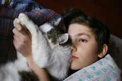 Teenager boy in bed with cat cullde. Close up photo Royalty Free Stock Images