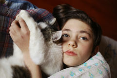 Teenager boy in bed with cat cullde. Close up photo Royalty Free Stock Image