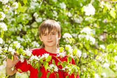 Teenager boy holds branch with white flowers Royalty Free Stock Photo