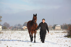 Teenager boy leading bay horse in winter Stock Photography