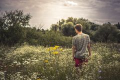 Teenager boy lonely walking summer meadow dramatic moody scenery. Teenager boy lonely walking at summer meadow dramatic moody scenery Stock Photo
