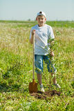 Teenager boy   planting tree Royalty Free Stock Photo