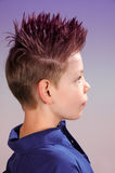 Teenager. Boy  with punk   hairstyle  in colorful light Stock Images
