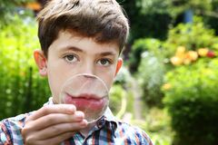 Teenager boy smile with magnifying glass Royalty Free Stock Image