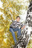 Teenager climb a tree Stock Photos