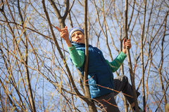 A teenager climbs trees in the spring Stock Photos